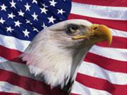 Минюст США подал в суд на American Express за нарушение правил конкуренции