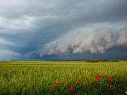 Українська економіка - сподівання тільки на врожай