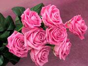 Журналисты узнали, сколько будет стоить букет цветов к 8 марта