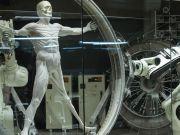З живих клітин створили тривимірні об'єкти