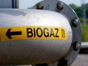 Сколько биогазовых станций за год ввели в эксплуатацию в Украине