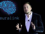 Маск рассказал, когда покажет обновление технологии по соединению мозга с компьютером (фото)