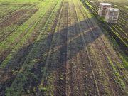 Земельный налог: какие участки не подлежат налогообложению