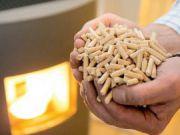 Шведы хотят производить пеллеты в Винницкой области
