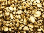 Госгеонедра впервые выставила на аукцион участок с залежами золота
