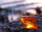 Более 50 кг янтаря на 2,3 млн грн изъято в ходе обысков в Ровненской области