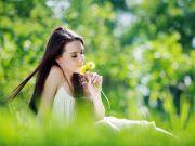 Лекарство на основе пыльцы избавляет от аллергии на несколько лет