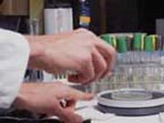 """Американские ученые разрабатывают прививки от ВИЧ с """"нейтрализующим антителом"""""""